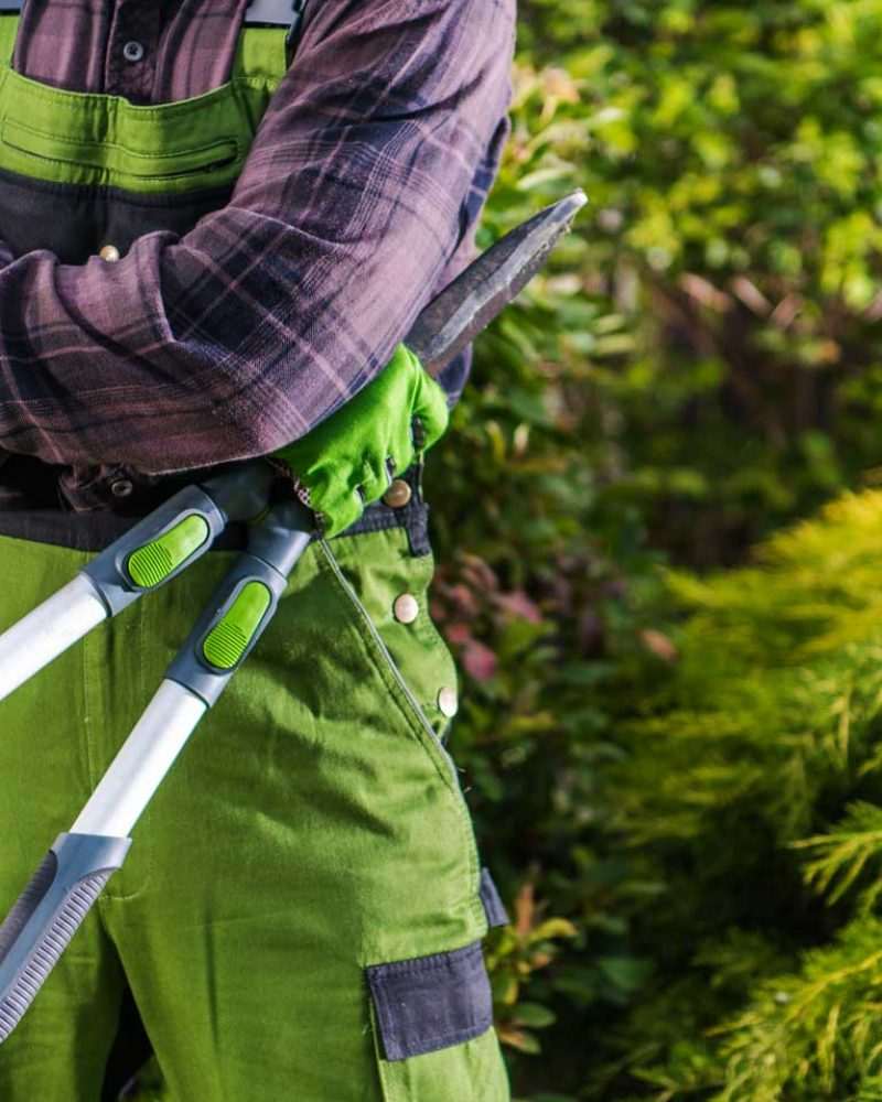 professional-gardener-with-large-scissors-in-his-h-4K5XZSE